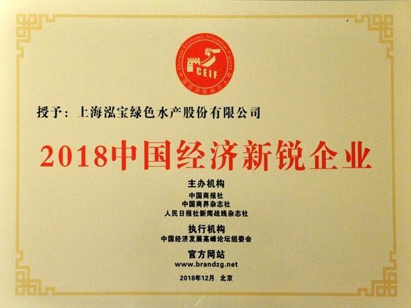 泓宝-2018中国经济新锐企业