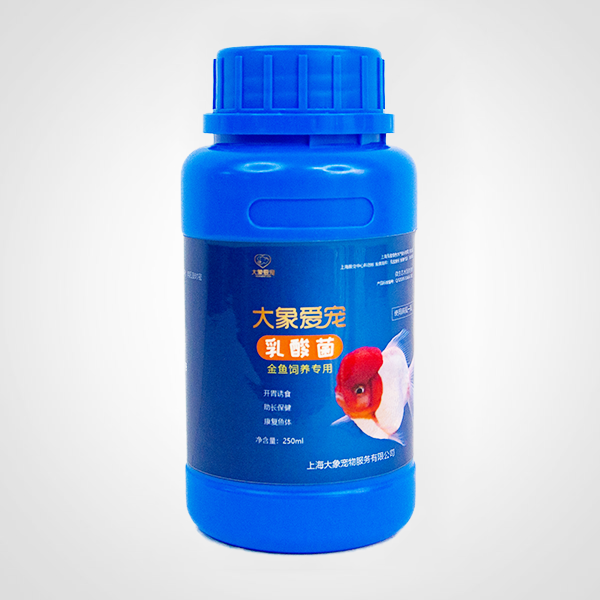 金鱼-乳酸菌(250ml)