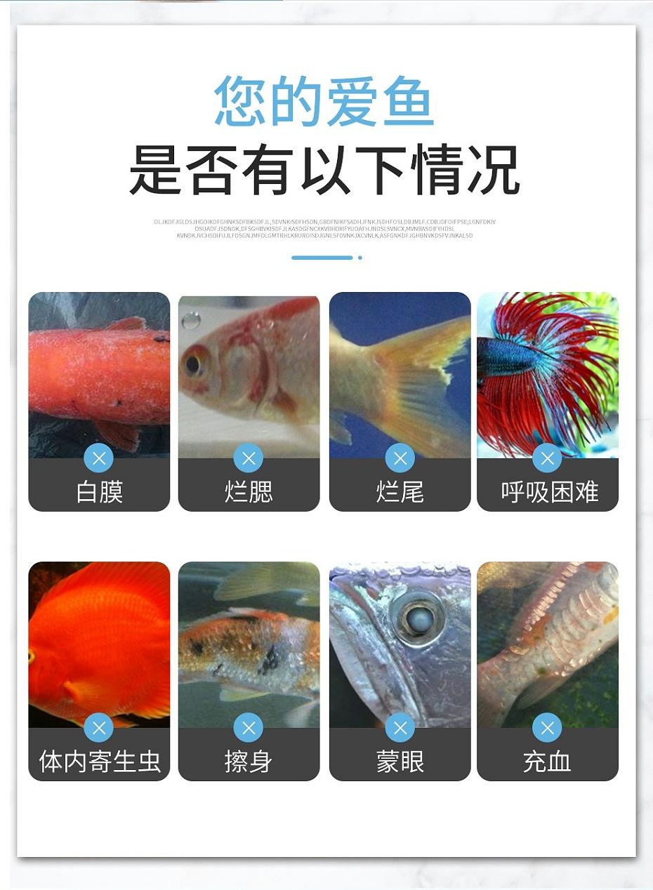 观赏鱼鱼药药水