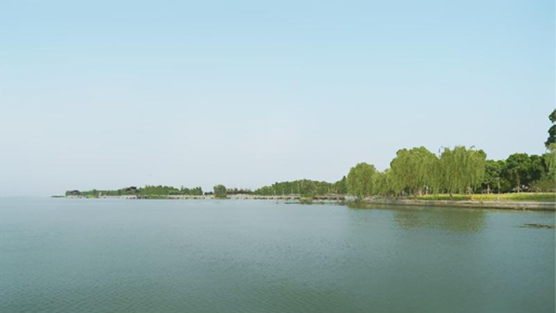 水质改良剂是什么?上海泓宝科技为您揭秘