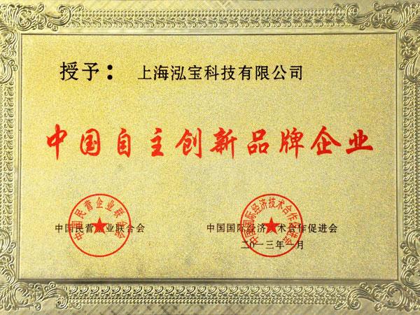 2013中国自主创新品牌企业